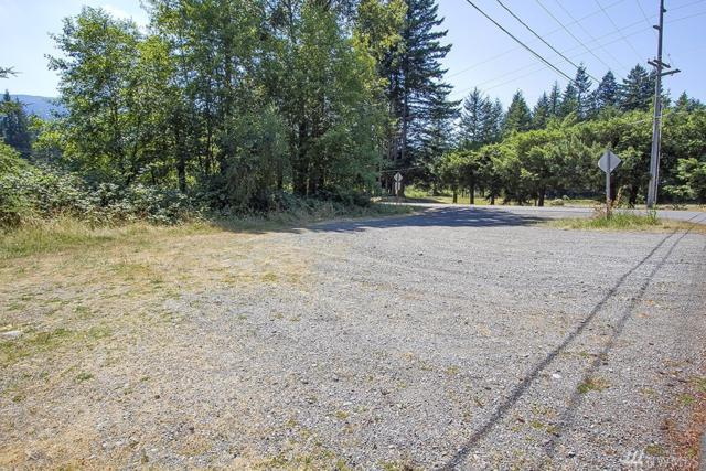 43301 SE 128th Place, North Bend, WA 98045 (#1468272) :: Ben Kinney Real Estate Team