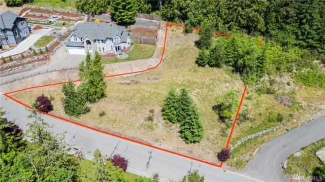 434 Longtime Lane, Sedro Woolley, WA 98284 (#1468274) :: Record Real Estate