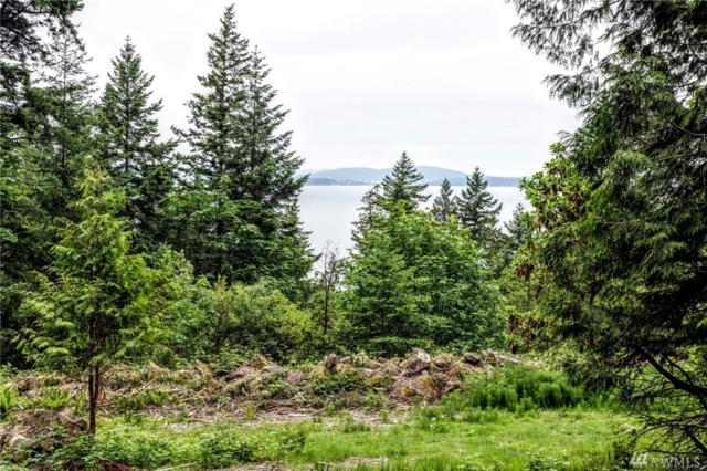 13322 Chuckanut Mountain Rd, Bow, WA 98232 (#1468294) :: Keller Williams Western Realty
