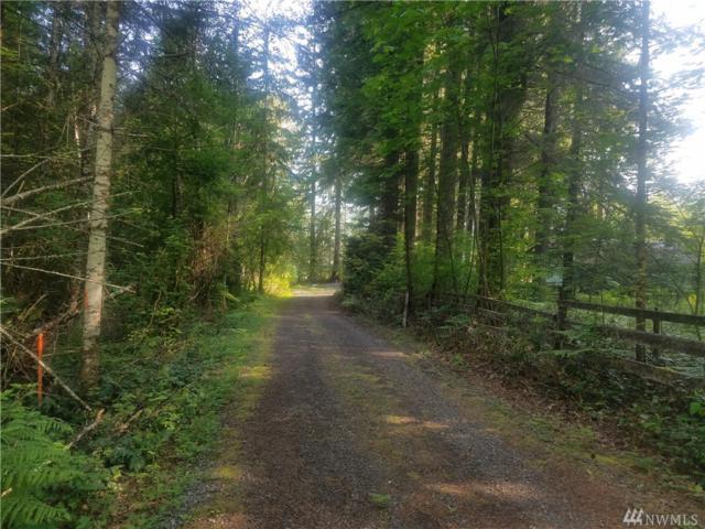 25015 State Route 706 E, Ashford, WA 98304 (#1468312) :: KW North Seattle