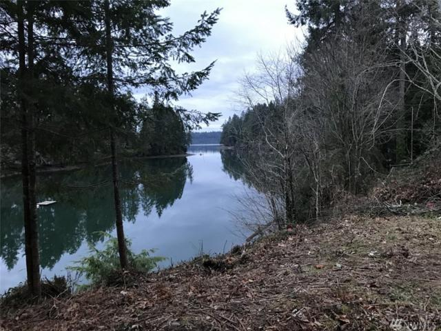 2280 E Grapeview Loop Rd, Grapeview, WA 98546 (#1468551) :: Better Properties Lacey