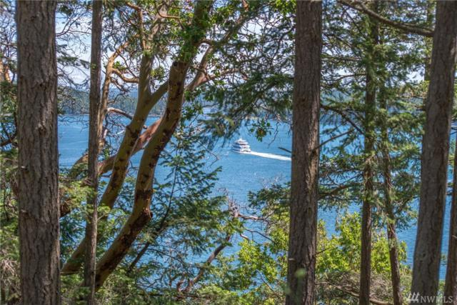1570 Spring Point Rd, Orcas Island, WA 98245 (#1468570) :: Better Properties Lacey