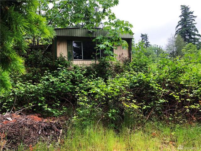 18507 9th St E, Lake Tapps, WA 98391 (#1469118) :: Kimberly Gartland Group
