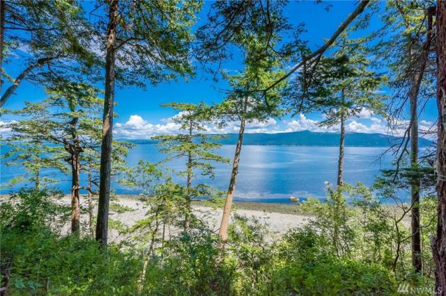 71 Eliza Island, Bellingham, WA 98226 (#1469134) :: Ben Kinney Real Estate Team