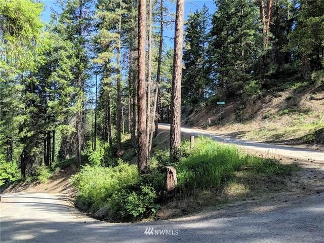 25505 Riata Street, Leavenworth, WA 98826 (#1469142) :: My Puget Sound Homes