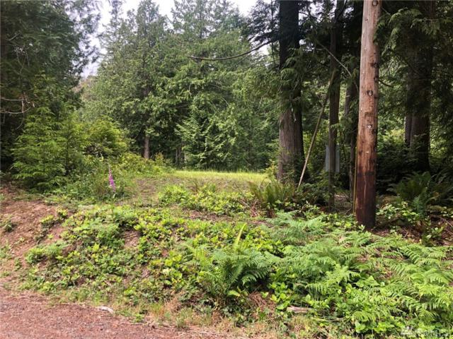 0 Misery Point Rd, Seabeck, WA 98383 (#1469456) :: Ben Kinney Real Estate Team