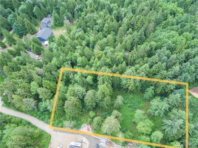 0 30th Ave NW, Gig Harbor, WA 98332 (#1469469) :: Mike & Sandi Nelson Real Estate