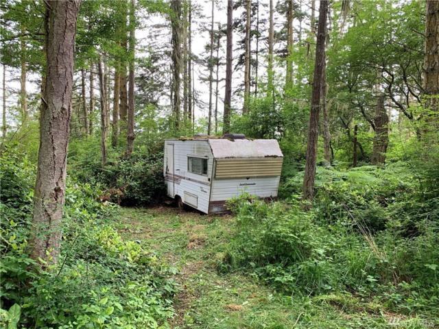 112 Robin Lane, Lopez Island, WA 98261 (#1469523) :: Ben Kinney Real Estate Team