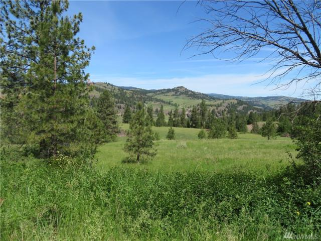 0-Lot 1 Boulder Creek Rd, Curlew, WA 99118 (#1469688) :: Chris Cross Real Estate Group