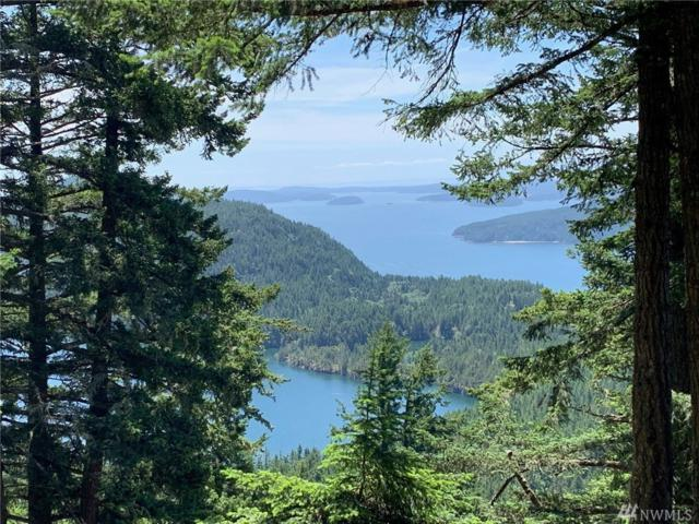 1357 Vusario Lane, Orcas Island, WA 98245 (#1469798) :: Northern Key Team