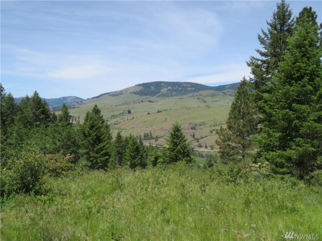 0-Lot 2 Boulder Creek Rd, Curlew, WA 99118 (#1469836) :: Chris Cross Real Estate Group