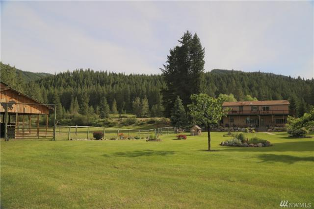 21 Newby Creek Rd, Twisp, WA 98856 (#1469848) :: Better Properties Lacey