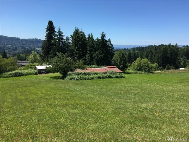 122 Krestview Lane, Woodland, WA 98674 (#1470132) :: The Robert Ott Group