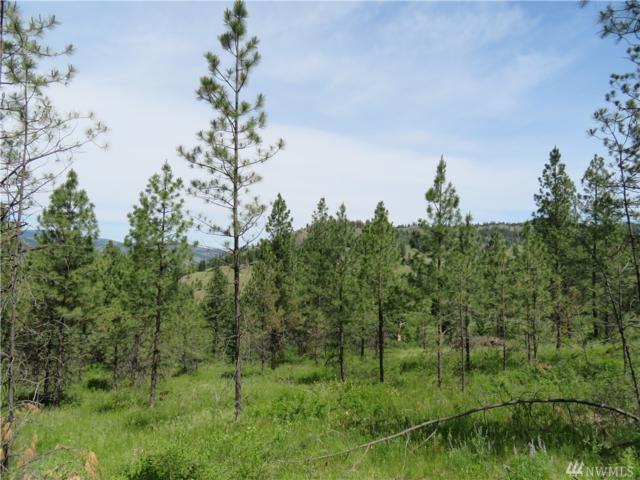 0-Lot 3 Boulder Creek Rd, Curlew, WA 99118 (#1470255) :: Real Estate Solutions Group