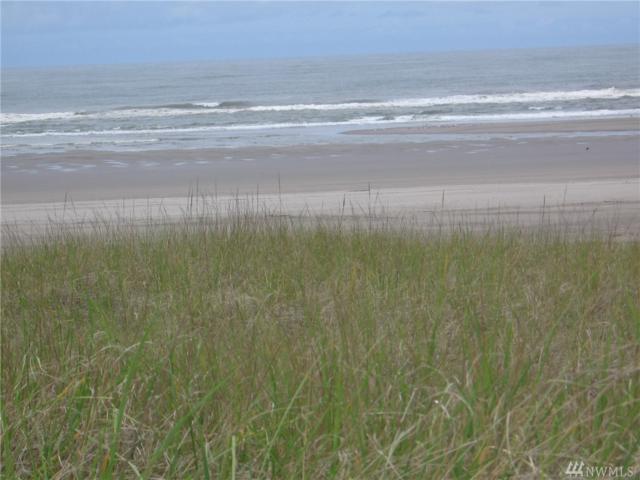 1007 205th Lane, Ocean Park, WA 98640 (#1470340) :: McAuley Homes