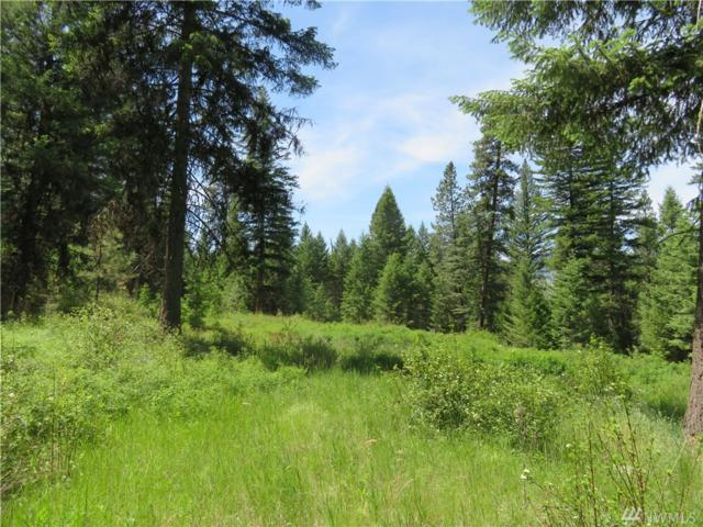 0-Lot 4 Boulder Creek Rd, Curlew, WA 99118 (#1470404) :: Chris Cross Real Estate Group