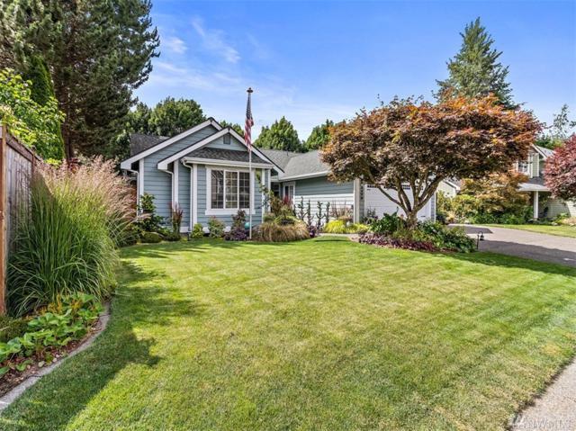 5479 Park Place Lp SE, Lacey, WA 98503 (#1470449) :: Platinum Real Estate Partners