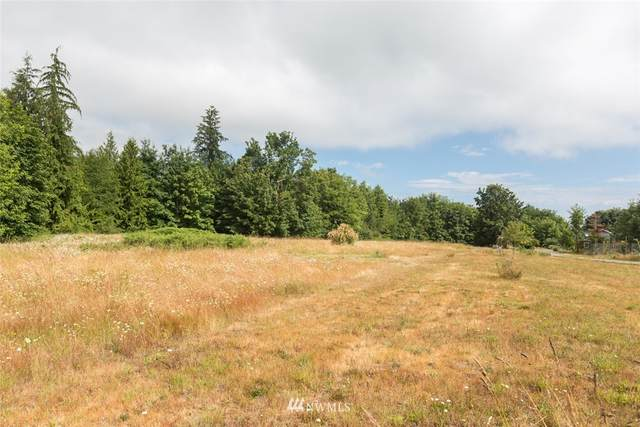 9999 Henry Boyd Road, Port Angeles, WA 98362 (#1470523) :: Pacific Partners @ Greene Realty
