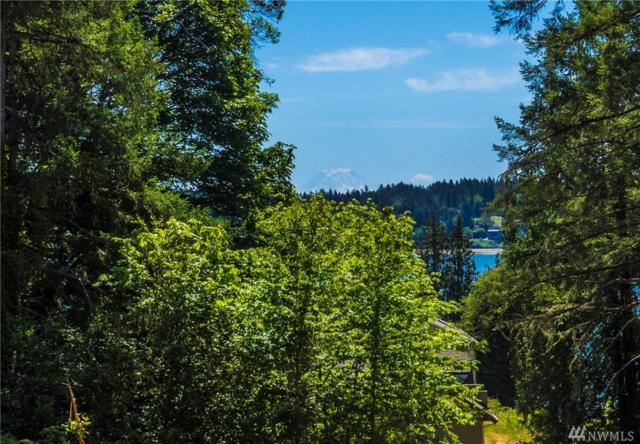 13411 Goldman Dr NW, Gig Harbor, WA 98329 (#1470617) :: Better Homes and Gardens Real Estate McKenzie Group