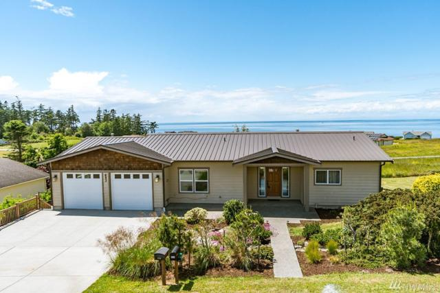 653 Palisades Dr, Coupeville, WA 98239 (#1470839) :: Ben Kinney Real Estate Team