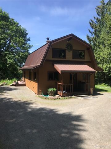 141 Cedar Hollow Dr, Port Angeles, WA 98362 (#1470861) :: Crutcher Dennis - My Puget Sound Homes