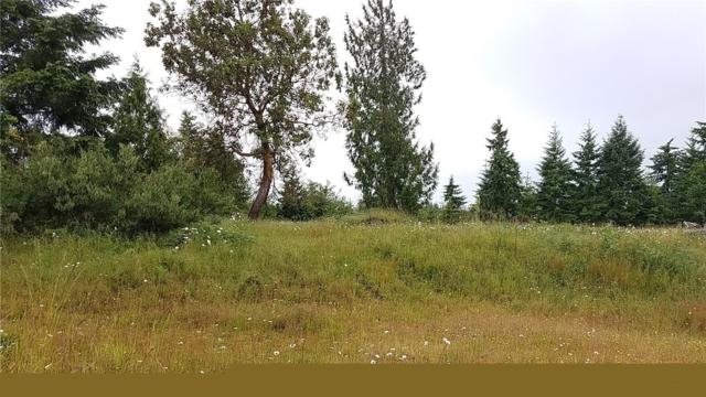 170 SE Arabian Rd, Shelton, WA 98584 (#1471316) :: Kimberly Gartland Group