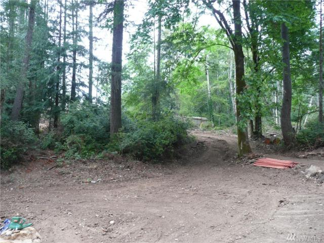 60 Bear Rd, Quilcene, WA 98376 (#1471437) :: Crutcher Dennis - My Puget Sound Homes