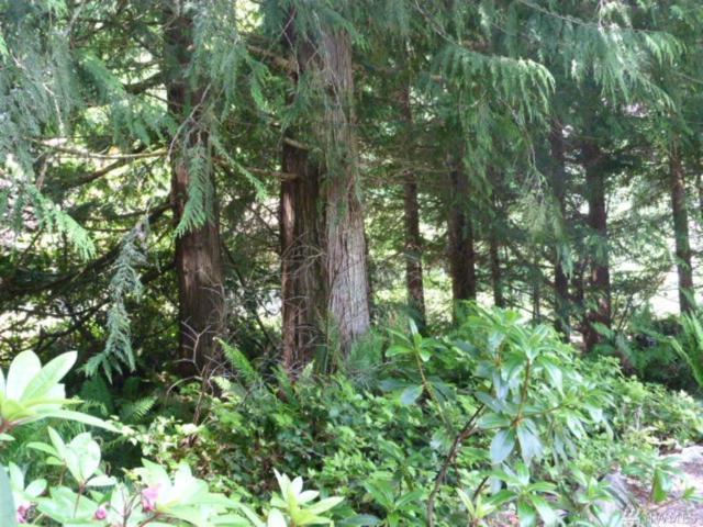 143 Forester Lane, Port Ludlow, WA 98365 (#1471463) :: Kimberly Gartland Group