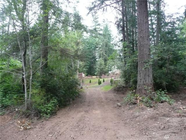 0 Deer Rd, Quilcene, WA 98376 (#1471469) :: Crutcher Dennis - My Puget Sound Homes