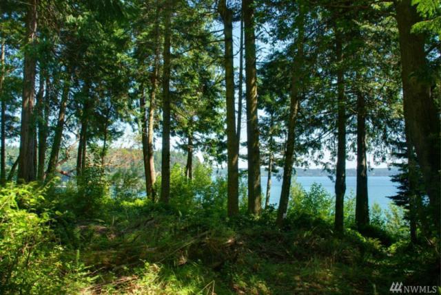 5373 Paradise Bay Rd NE, Port Ludlow, WA 98365 (#1471659) :: Keller Williams Realty