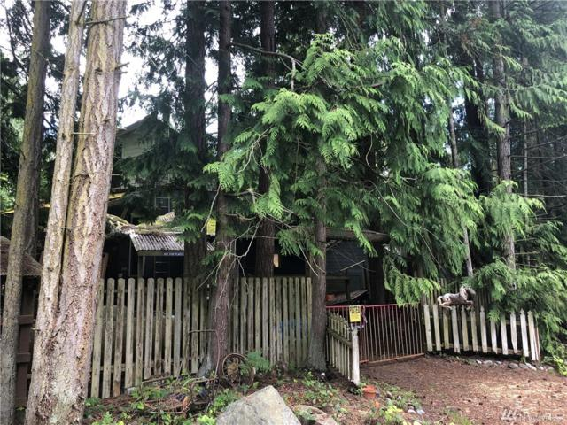 260 S 2nd, Port Townsend, WA 98368 (#1471711) :: Platinum Real Estate Partners