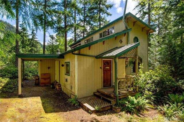31218 Dagger Lake Rd, Monroe, WA 98272 (#1471749) :: Better Properties Lacey