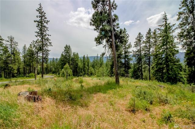 0-Lot 3 Owl Ridge Dr, Cle Elum, WA 98922 (MLS #1471768) :: Nick McLean Real Estate Group