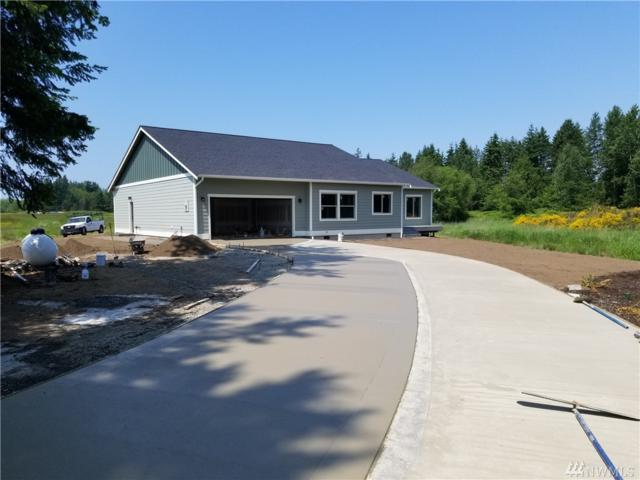 8561 Blaine Rd, Blaine, WA 98230 (#1472174) :: Kimberly Gartland Group