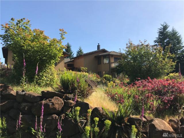 133 Ridgeview Rd, Chehalis, WA 98532 (#1472295) :: Ben Kinney Real Estate Team