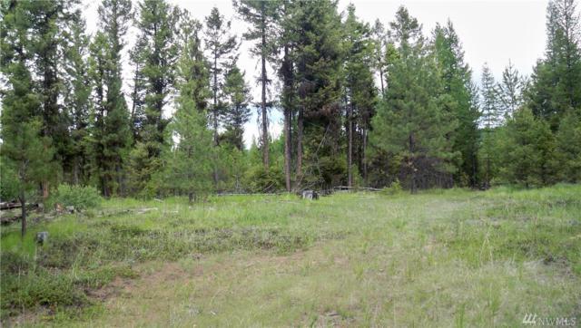 1007 Lightning Creek, Wauconda, WA 98859 (#1472433) :: Record Real Estate