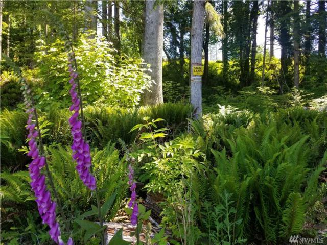 0 S Lake Roesiger Rd, Snohomish, WA 98290 (#1472464) :: NW Homeseekers