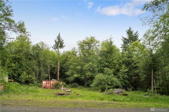 430 E Probert Rd, Shelton, WA 98584 (#1472538) :: Better Properties Lacey