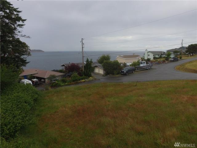 9999-Lot 8 Victoria Lp, Port Townsend, WA 98368 (#1472745) :: McAuley Homes