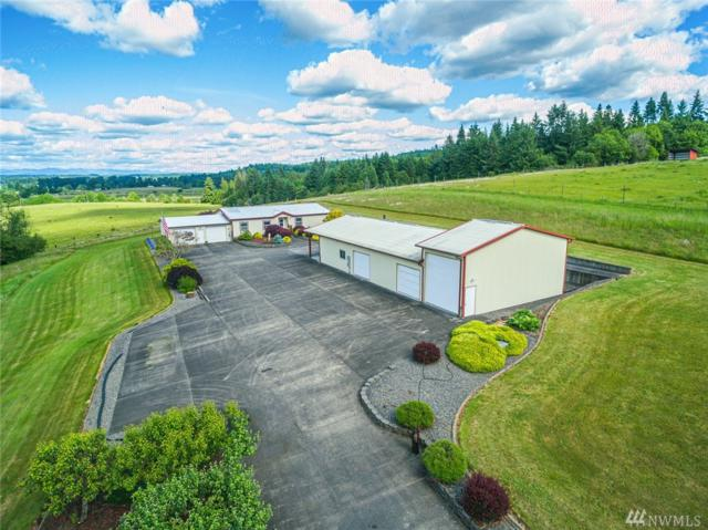 185 Curtis Hill Rd, Chehalis, WA 98532 (#1472747) :: Better Properties Lacey