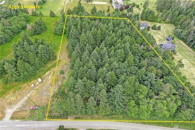 1000 Terry Heights Lane, Camano Island, WA 98282 (#1472751) :: Platinum Real Estate Partners