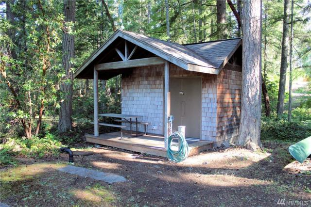 22119 N Clearlake Blvd, Yelm, WA 98597 (#1472861) :: Platinum Real Estate Partners