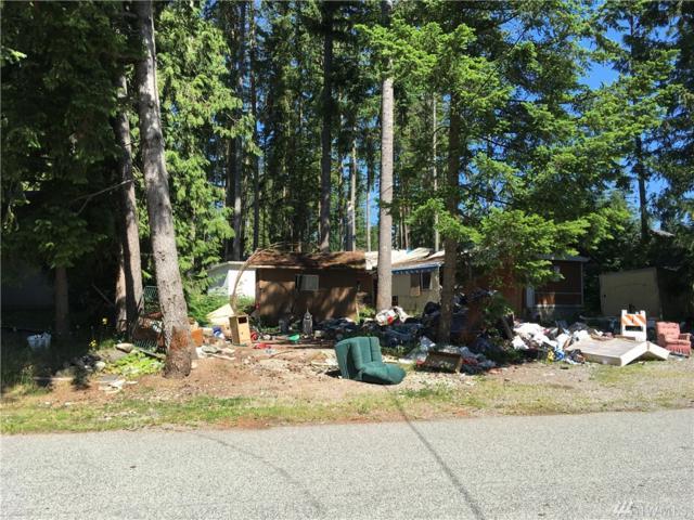 8366 Golden Valley Blvd, Maple Falls, WA 98266 (#1472899) :: Kimberly Gartland Group