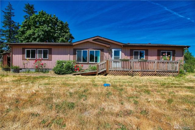 7136 196th Ave SW, Rochester, WA 98579 (#1473101) :: Northwest Home Team Realty, LLC