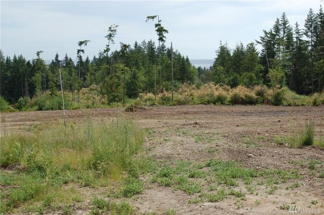 0-Lot A Hersig Rd, Oak Harbor, WA 98277 (#1473128) :: Ben Kinney Real Estate Team
