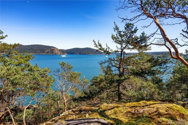 0 Shoreland Drive, Lopez Island, WA 98261 (#1473292) :: Platinum Real Estate Partners