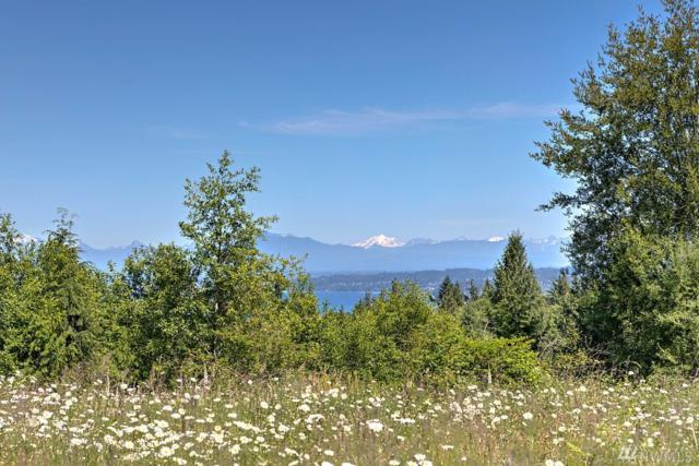0 Linda Lane, Clinton, WA 98236 (#1473471) :: KW North Seattle