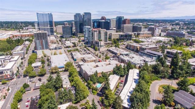 130 105th Ave SE #102, Bellevue, WA 98004 (#1473490) :: Keller Williams Realty Greater Seattle