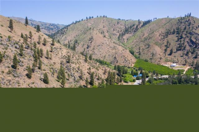 8416 Entiat River Rd, Entiat, WA 98822 (#1473556) :: The Robert Ott Group