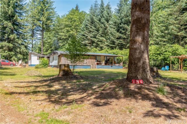 141 Calvin Rd, Cinebar, WA 98533 (#1473631) :: Ben Kinney Real Estate Team